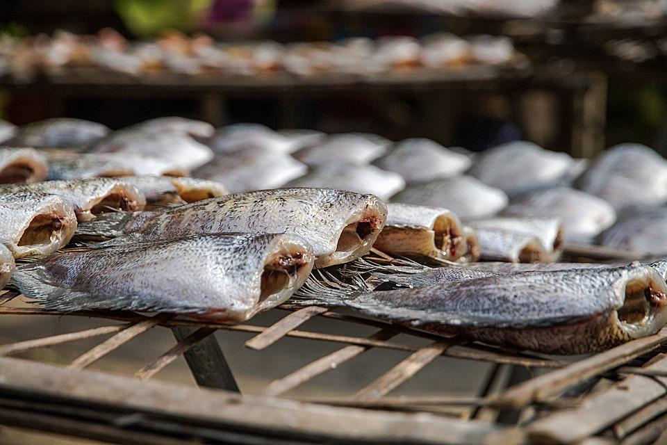 ราคาปลาสลิด